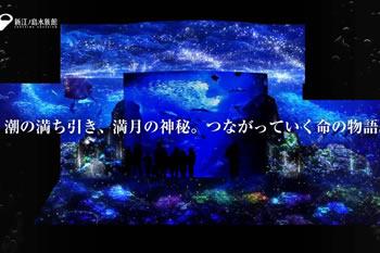 ナイトワンダーアクアリウム2016<br>~月光に漂う水族館~