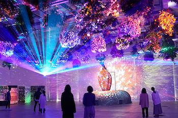 HANA・BIYORI<br>「マルチエンディング」型 花とデジタルのアートショー(2021年春バージョン)